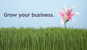 how to grow online business